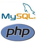 تطوير البرامج والمواقع